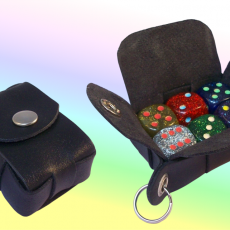 gallery dice cases (1)