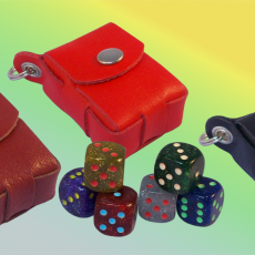 gallery dice cases (4)
