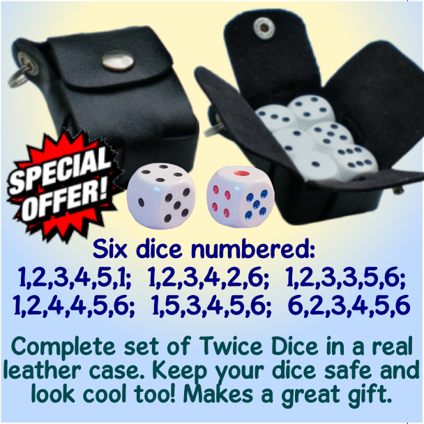 set of Twice Dice in a leather case